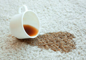 Lee County Commercial Carpet Cleaning